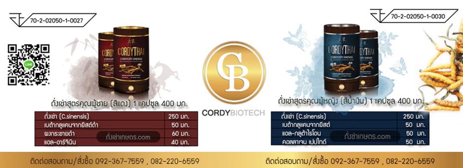 ถั่งเช่าคอร์ดี้ไทย สิทธิบัตรมหาวิทยาลัยเกษตรศาสตร์ ถั่งเช่าเพื่อสุภาพบุรุษและสตรี