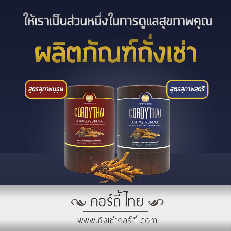 ทำไมถั่งเช่าคอร์ดี้ไทยถึงแพง